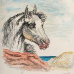 """""""Testa di cavallo"""" 1973, acquerello su carta, cm. 35,5x24,5"""